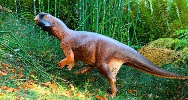 psittacosaurus-800x430